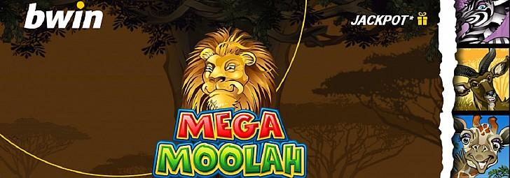 Bwin casino: Ένα κορυφαίο τζάκποτ* στο Μegah Moolah!